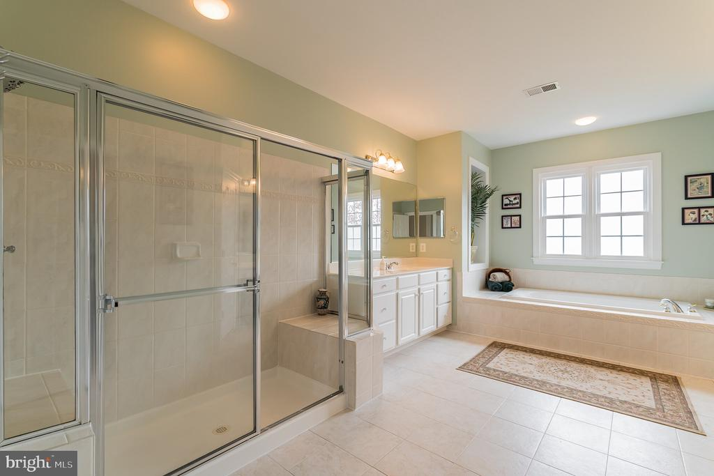 Large shower and tub in the master bath - 25543 THORNBURG CT, CHANTILLY