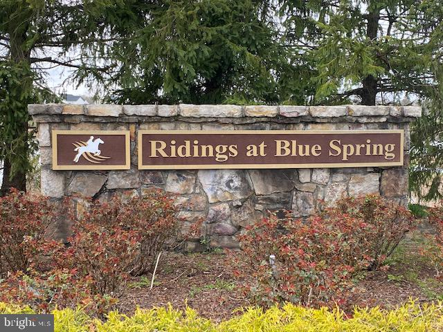 You will love living at Ridings at Blue Springs! - 25543 THORNBURG CT, CHANTILLY