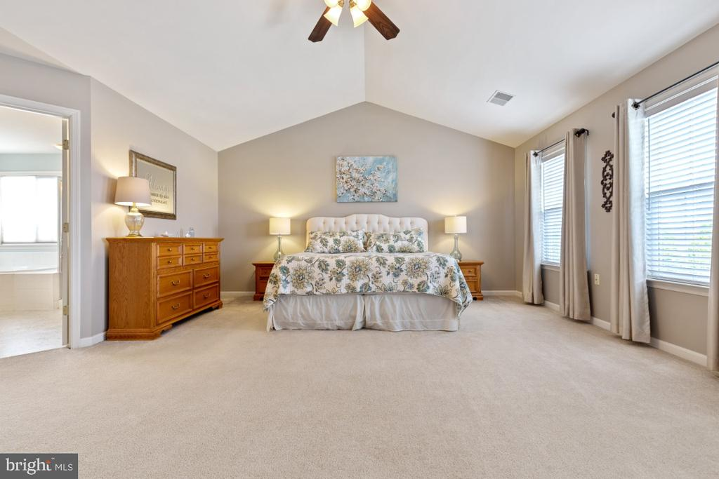Spacious Master Suite with Catherdral Ceilings - 215 ALPINE DR SE, LEESBURG