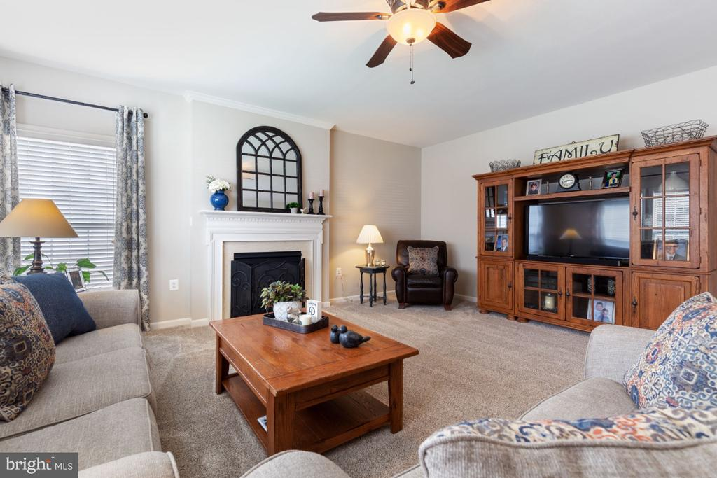 Family Room with Gas Fireplace - 215 ALPINE DR SE, LEESBURG
