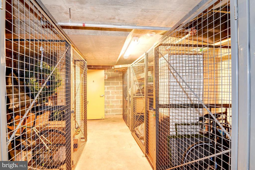 1 Storage Unit Comes with Sale of Home! - 910 M ST NW #525, WASHINGTON