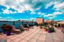 Expansive rooftop deck - 1701 KALORAMA RD NW #206, WASHINGTON