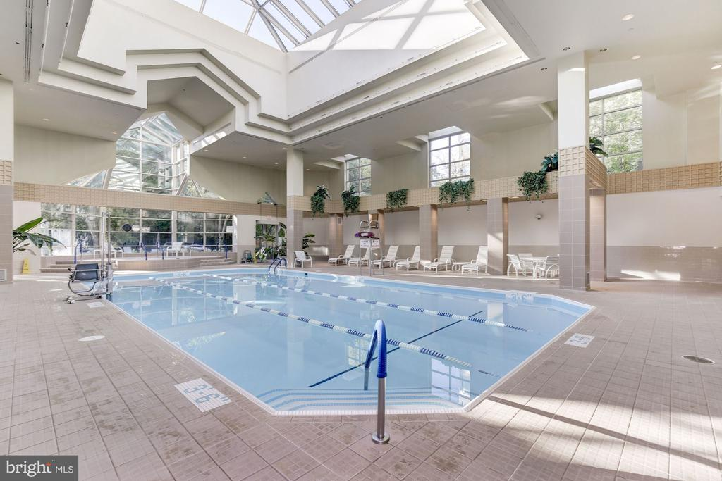 Indoor pool - 5600 WISCONSIN AVE #1408, CHEVY CHASE