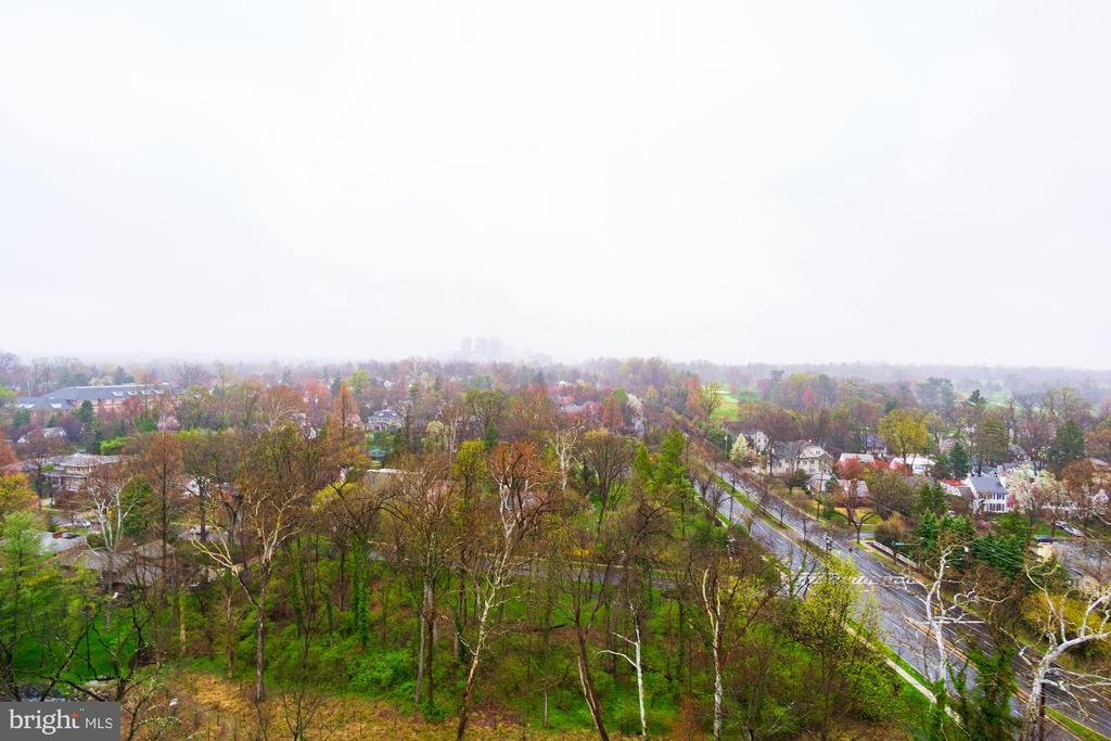 Views of trees toward downtown Bethesda - 5600 WISCONSIN AVE #1408, CHEVY CHASE
