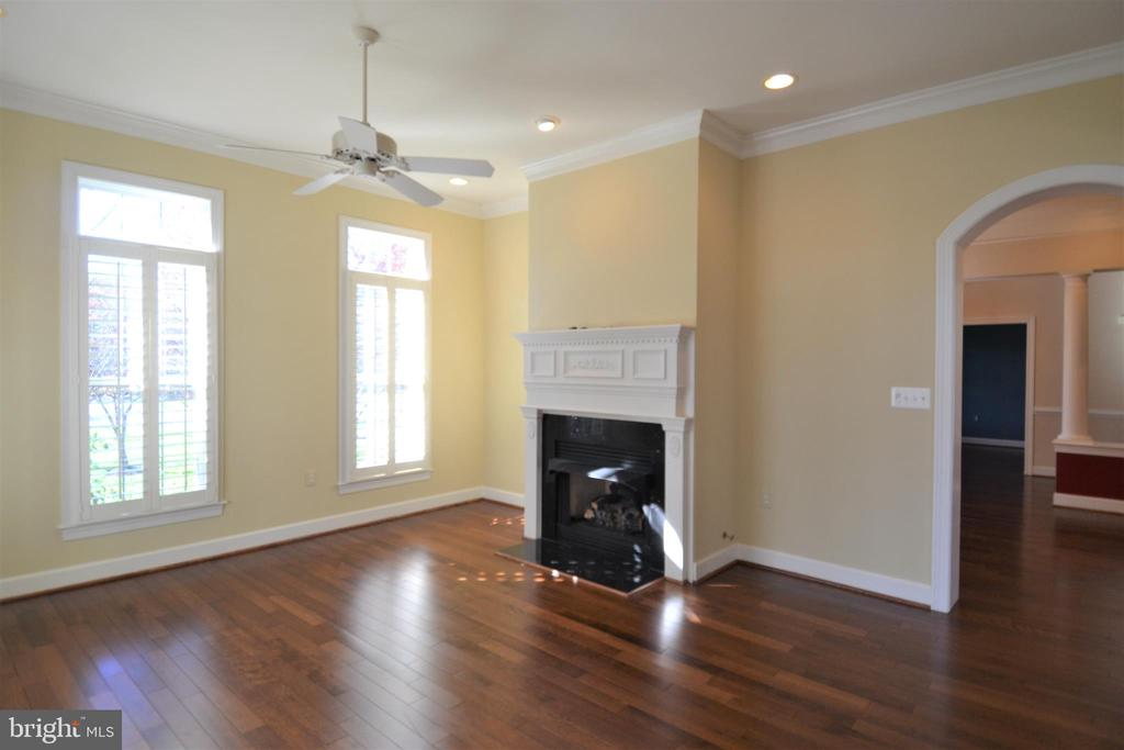 Family Room with gas fireplace - 18441 LANIER ISLAND SQ, LEESBURG