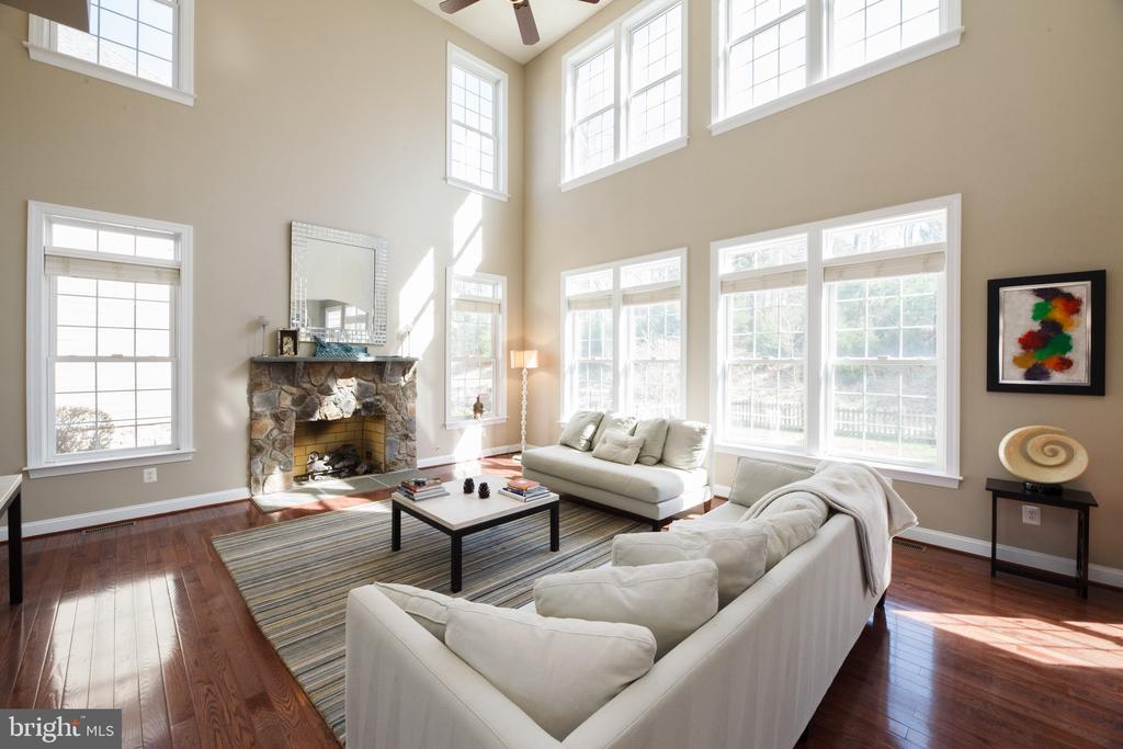 Look at all the windows in the 2-story family room - 18754 KIPHEART DR, LEESBURG