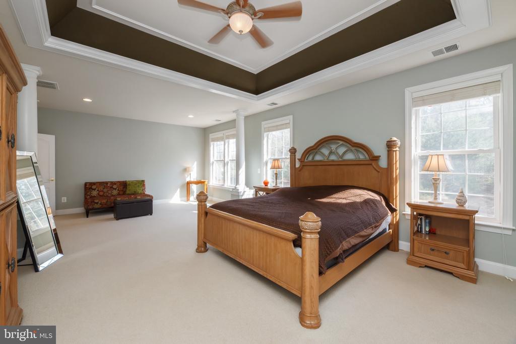 Master Bedroom - 18754 KIPHEART DR, LEESBURG