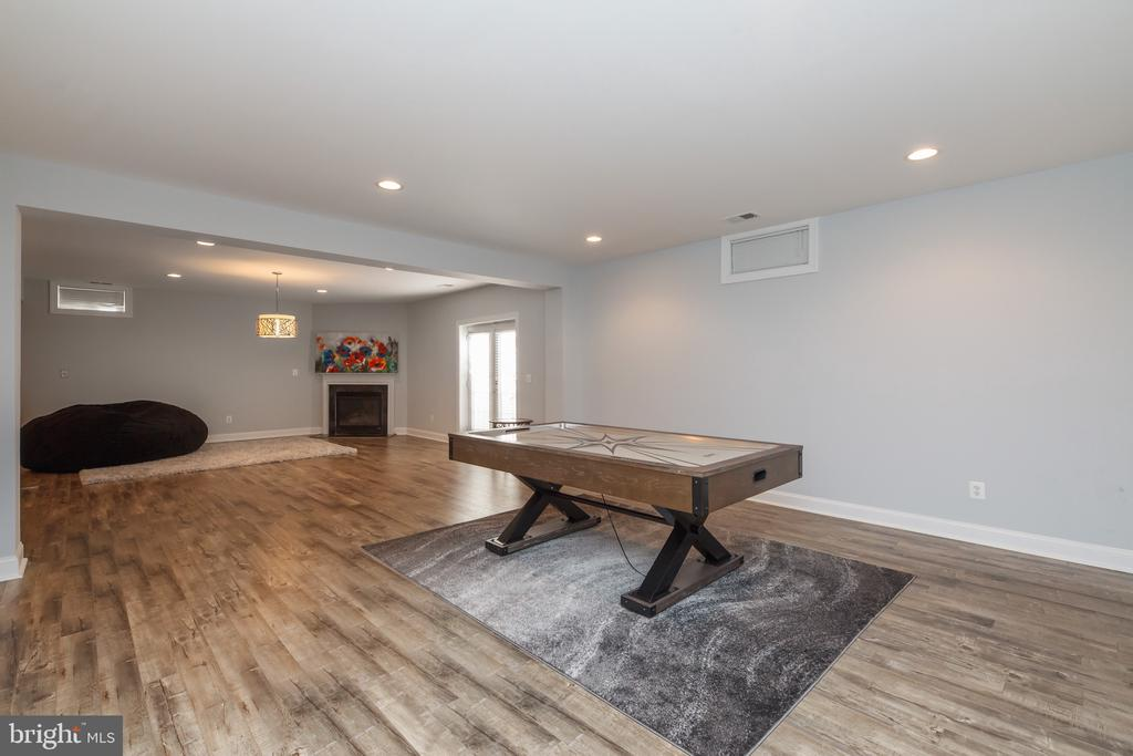 Lower Level Large Rec Room - 18754 KIPHEART DR, LEESBURG