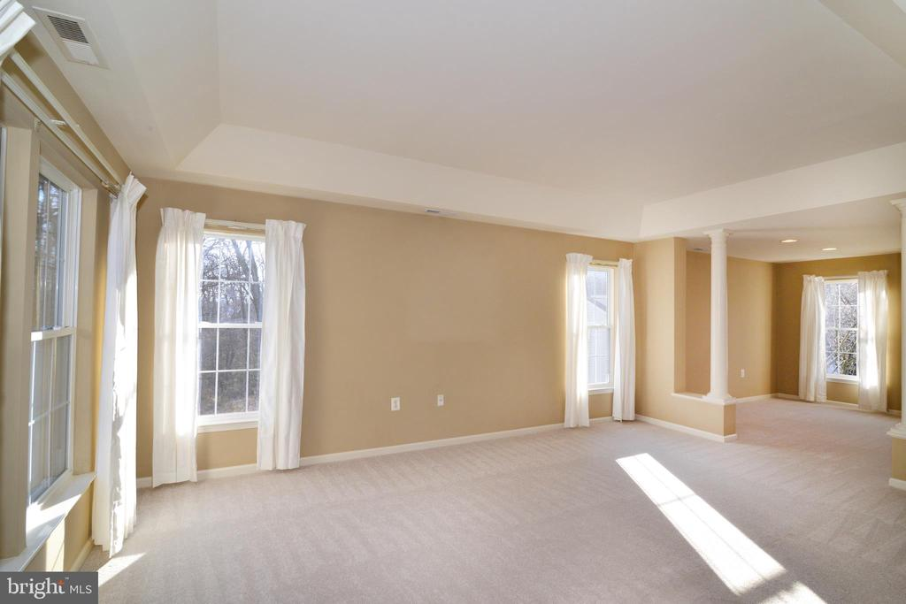 Owners suite with tons of windows; sitting room - 1439 HARLE PL SW, LEESBURG