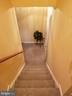 Basement Stairs Carpeted - 21 SLATE DR, FREDERICKSBURG