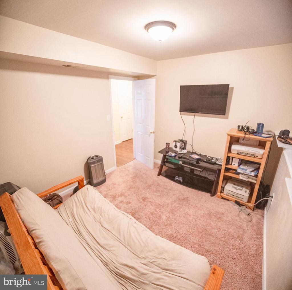 Bonus Room in Basement - 36009 WILDERNESS SHORES WAY, LOCUST GROVE