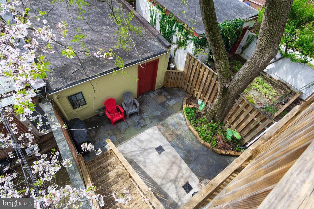 Rear Yard - 1330 IRVING ST NW, WASHINGTON