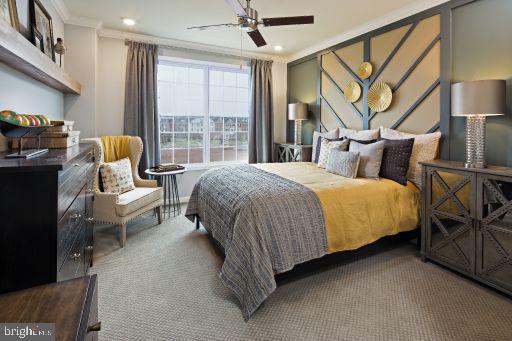 Asbury Master Bedroom - 23235 MILLTOWN KNOLL SQUARE #114, ASHBURN