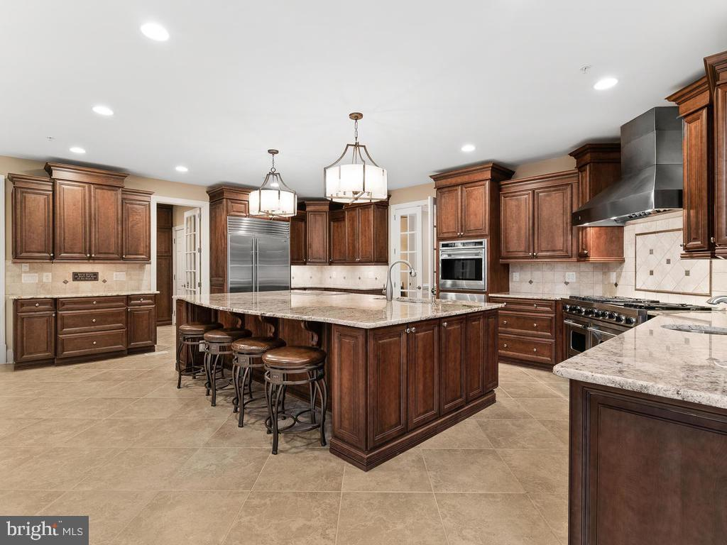 PLENTY KITCHEN CABINET(YOU MUST SEE!) - 10801 WINDCLOUD CT, OAKTON