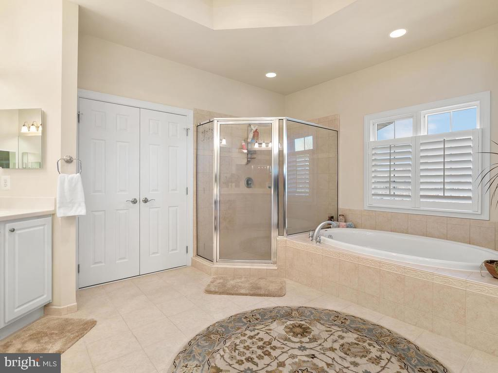 Master bath with soaking tub - 38511 DITCHLING PL, HAMILTON