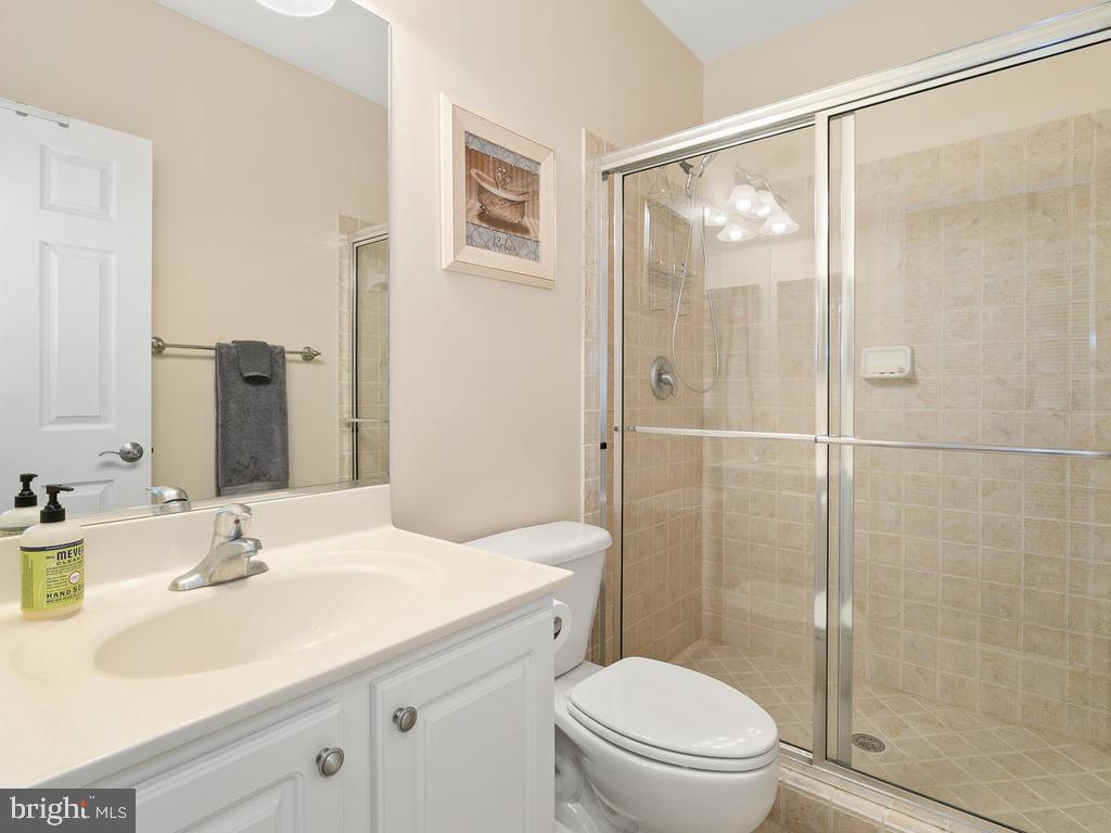 Lower level full bath - 38511 DITCHLING PL, HAMILTON