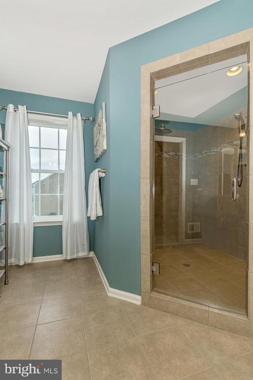 Master Bathroom with upgraded Roman Shower - 307 NICHOLAS HALL ST, NEW MARKET