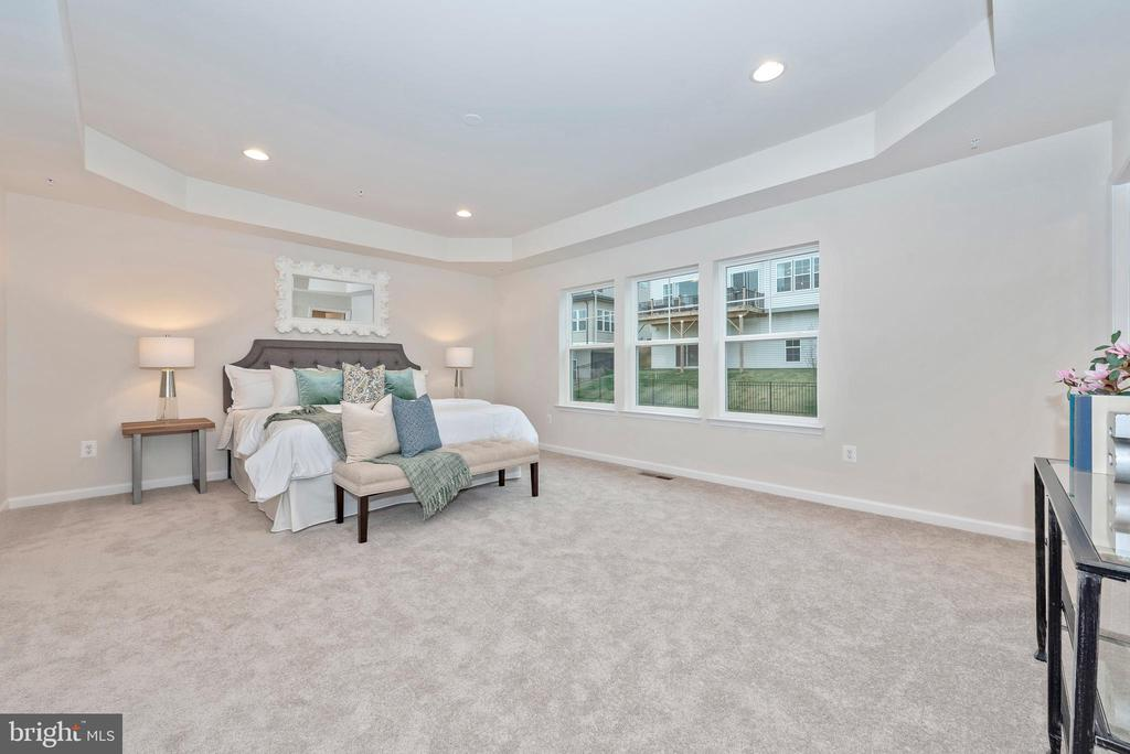 Master Bedroom with optional Tray Ceiling - 505 ISAAC RUSSELL, NEW MARKET