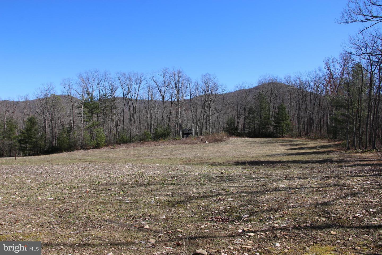土地 為 出售 在 Elkton, 弗吉尼亞州 22827 美國