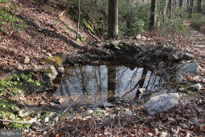 Terreno para Venda às Elkton, Virginia 22827 Estados Unidos