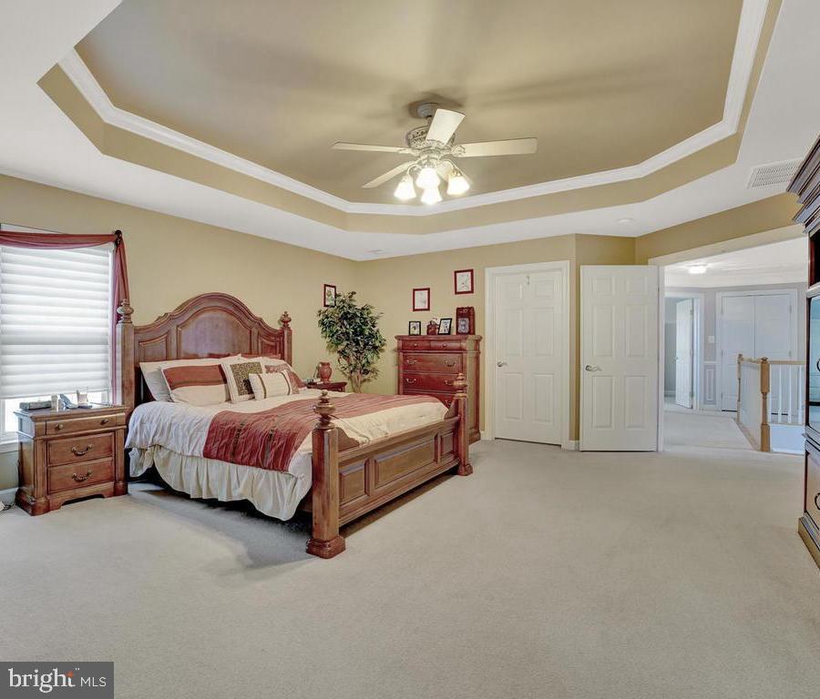 Master Suite w/ Tray Ceiling & Walk-In Closet - 11206 ANGUS WAY, WOODSBORO