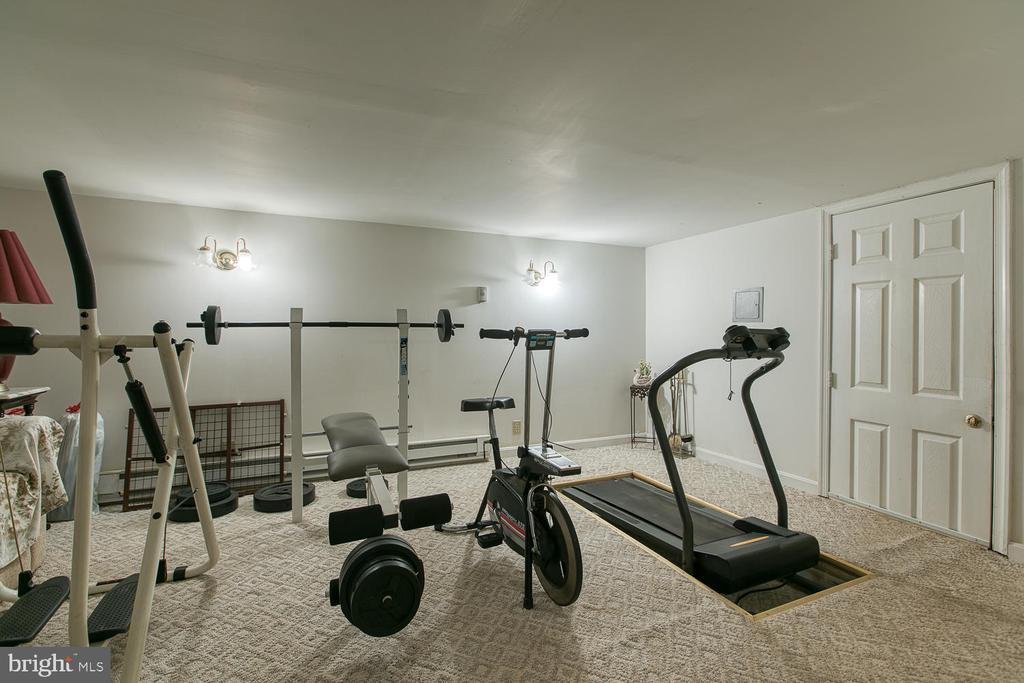 workout area in finished crawl space - 118 BARBARA ANN DR, STAFFORD