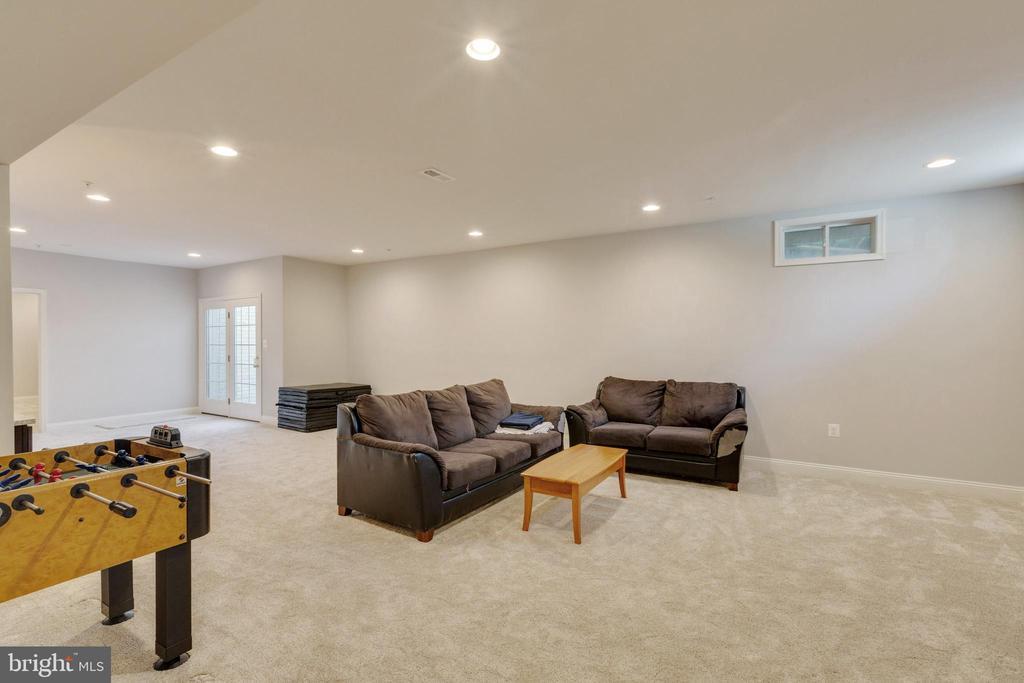 Recreation Room with walk up - 20240 MCNAMARA RD, POOLESVILLE