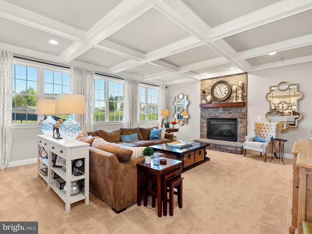 Huge Family Room with Stone Gas Fireplace - 41488 DEER POINT CT, ALDIE