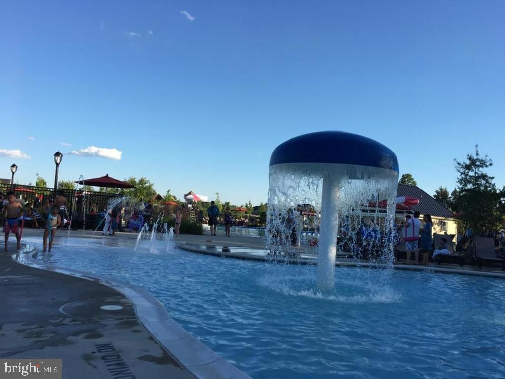 Children's pool with mushroom waterfall - 41488 DEER POINT CT, ALDIE