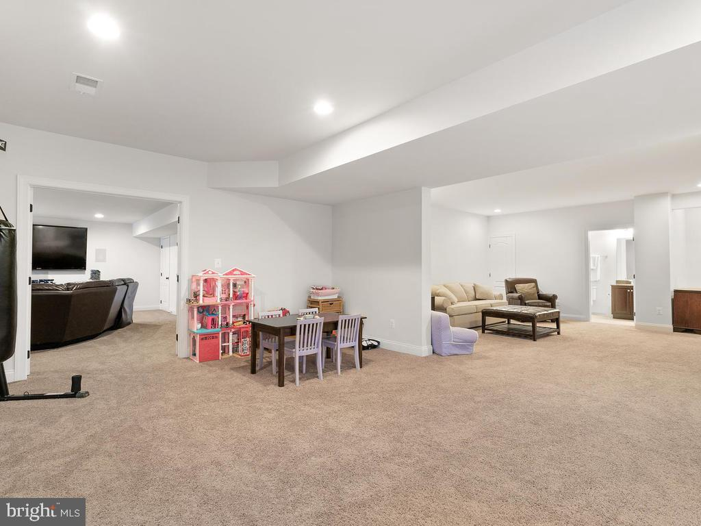 Lots of finished space to play - 41488 DEER POINT CT, ALDIE