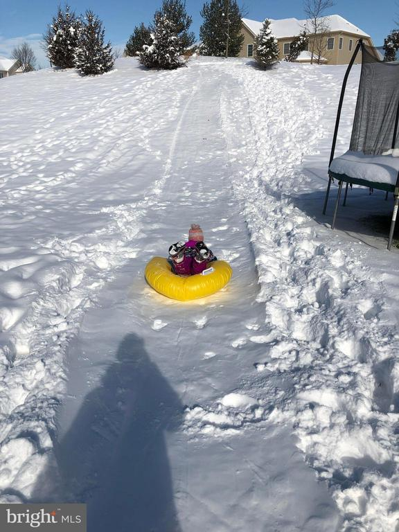 You have your own private Sled Hill in backyard - 41488 DEER POINT CT, ALDIE