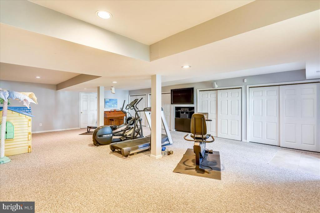 Lower Level Recreation Room - 6308 MOUNTAIN BRANCH CT, BETHESDA