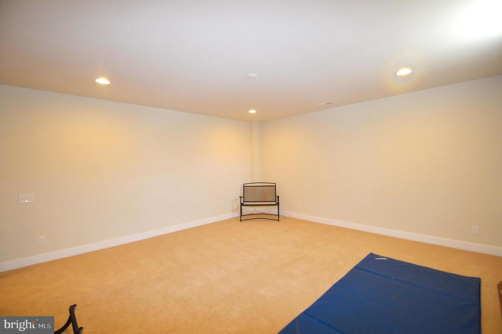 Exercise Room - 41121 ROCKY BOULDER CT, ALDIE