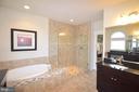Master Bath - 41121 ROCKY BOULDER CT, ALDIE