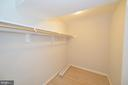 Lower level walk-in closet - 19771 GREGGSVILLE RD, PURCELLVILLE