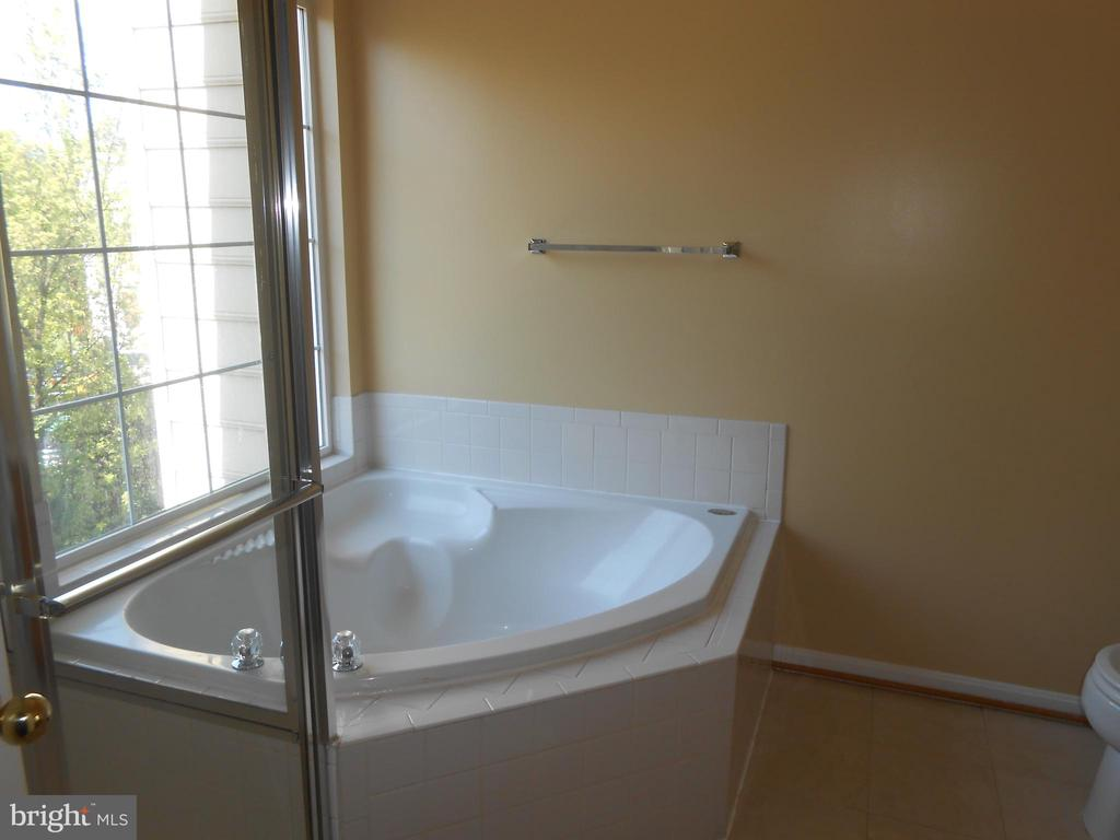 Master Bath - Soaking Tub - 8866 MOAT CROSSING PL, BRISTOW