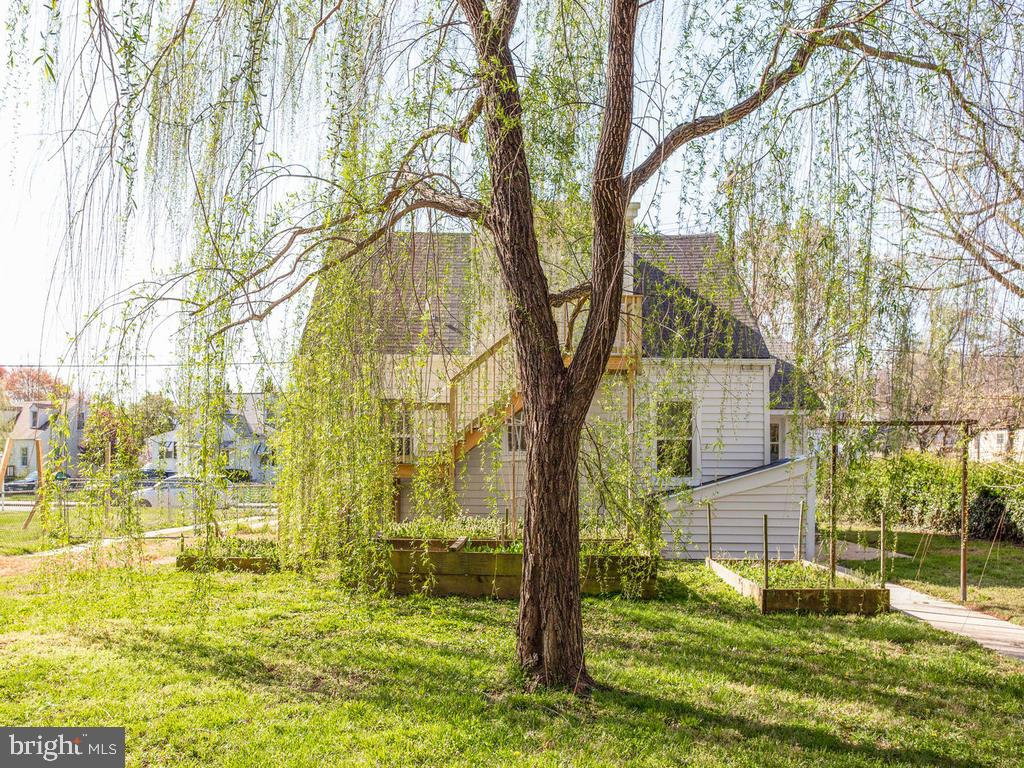 Weeping Willow, beautiful and the beauty - 6808 PICKETT DR, MORNINGSIDE