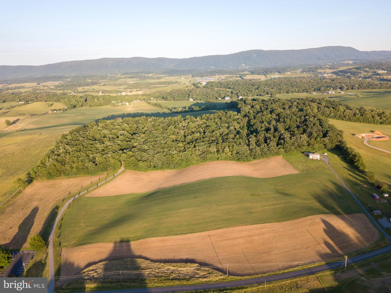 土地 為 出售 在 Harrisonburg, 弗吉尼亞州 22802 美國