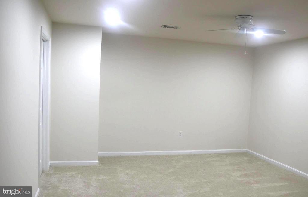 Bonus area in Basement Separate from Rec Room. - 9648 SAYBROOKE DR, BRISTOW