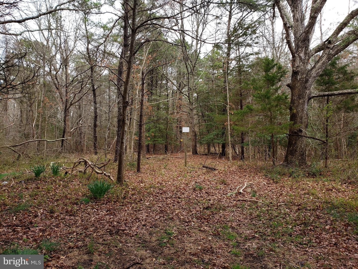 Land for Sale at West Creek, New Jersey 08092 United States
