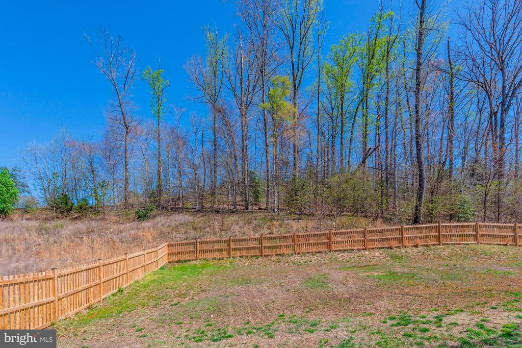 Private Yard Backs Wooded Common Land - 2308 SWEET PEPPERBRUSH LOOP, DUMFRIES