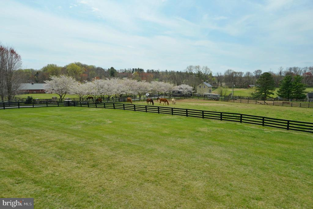 Additional deck view of horse farm - 40319 CHARLES TOWN PIKE, HAMILTON