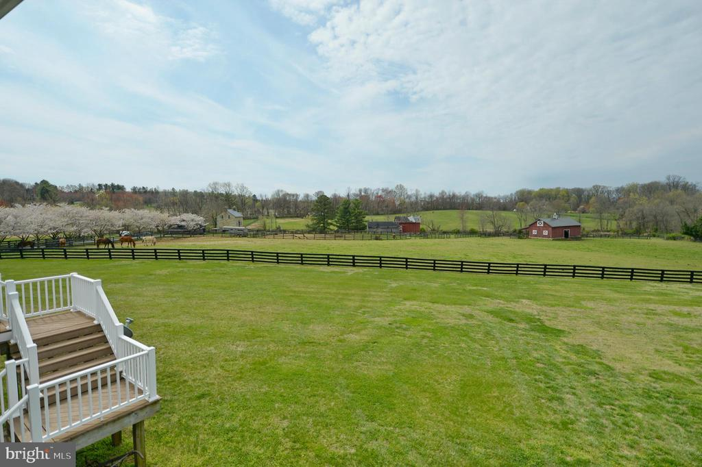 Deck view of neighboring horse farm - 40319 CHARLES TOWN PIKE, HAMILTON