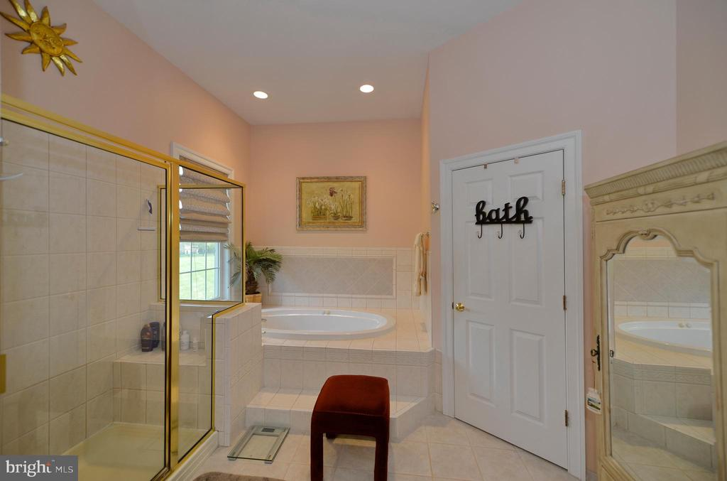 Main level lux master bathroom view two - 40319 CHARLES TOWN PIKE, HAMILTON