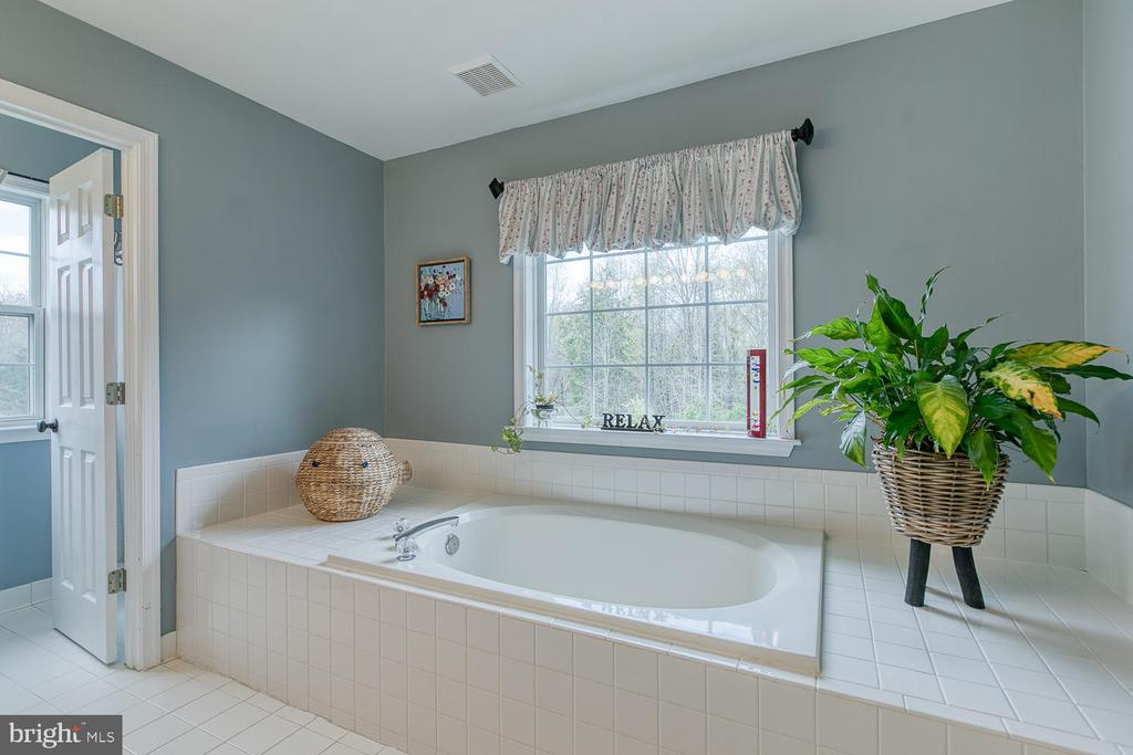 Soaking tub in master bath - 149 SUMMER BREEZE LN, FREDERICKSBURG
