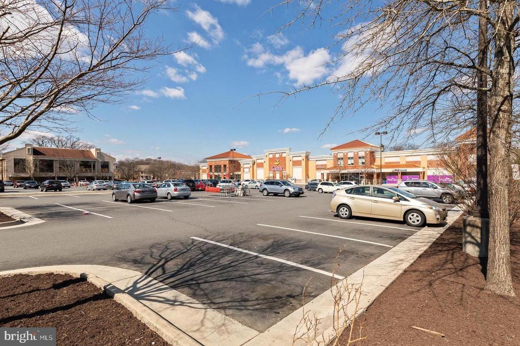 Oakton Shopping Center has much to offer - 3031 BORGE ST #205, OAKTON