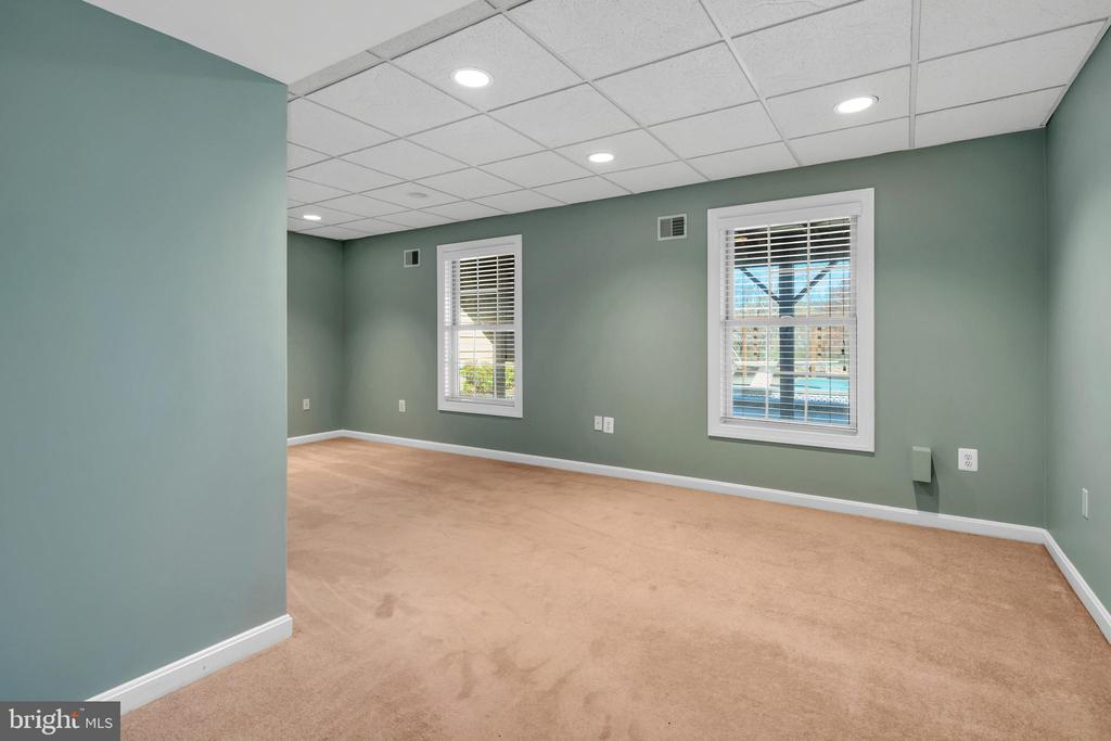 Bedroom 4 lower level - 34332 BRIDGESTONE LN, BLUEMONT