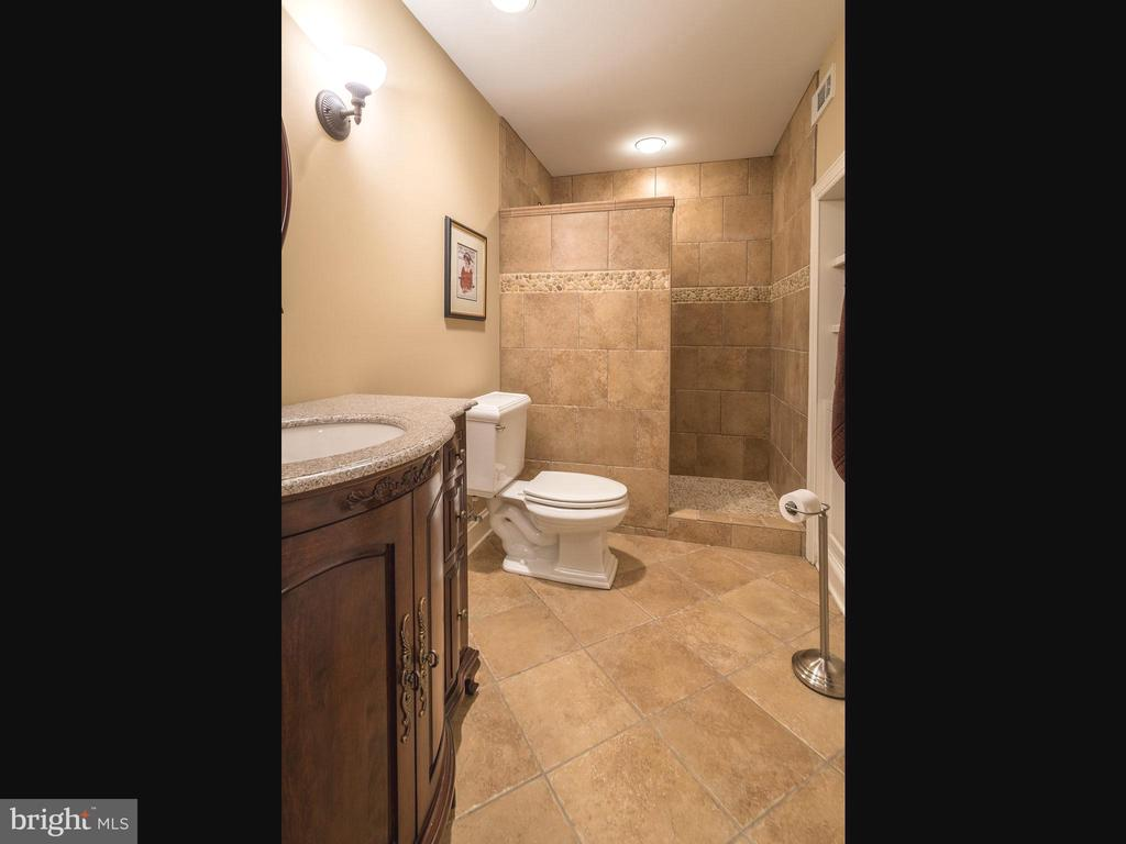 Lovely full bath in lower level - 19825 BETHPAGE CT, ASHBURN