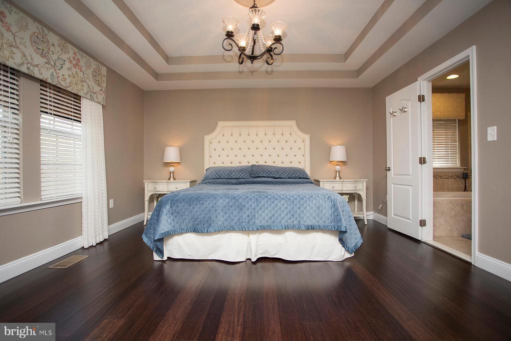 Master bedroom suite look at the ceiling detail - 26 WAGONEERS LN, STAFFORD