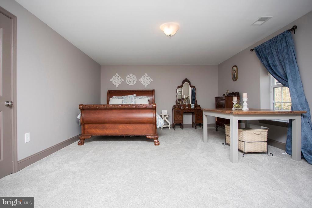 Lower level fifth bedroom/craft room - 26 WAGONEERS LN, STAFFORD
